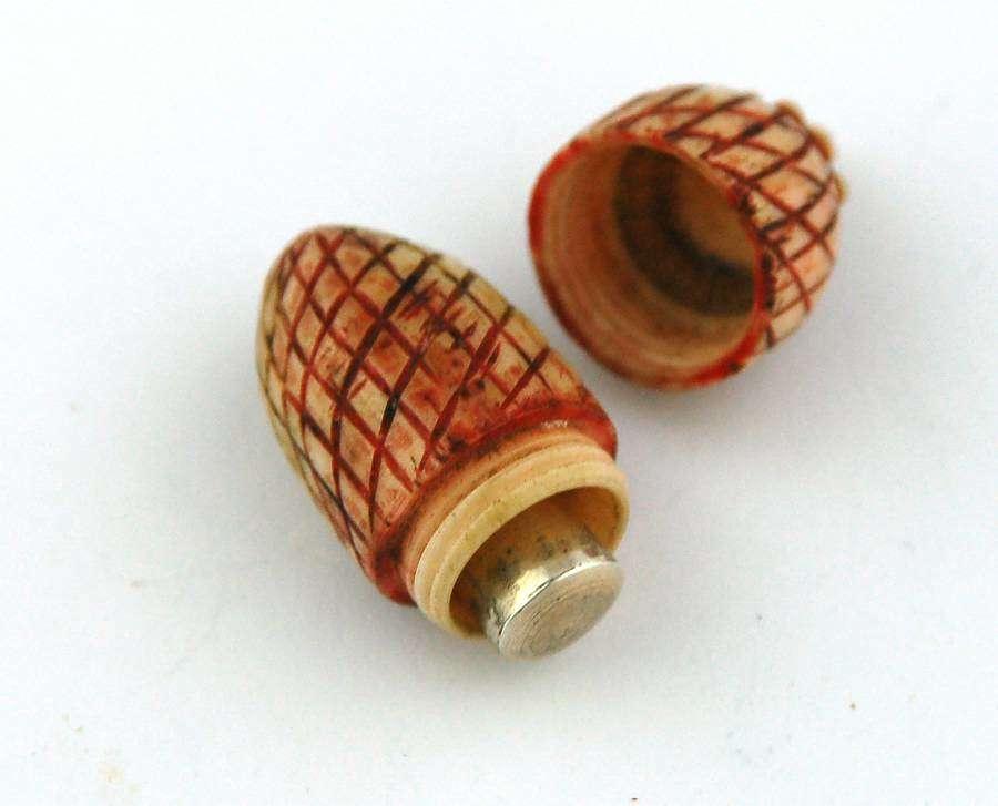 Tiny scent in acorn