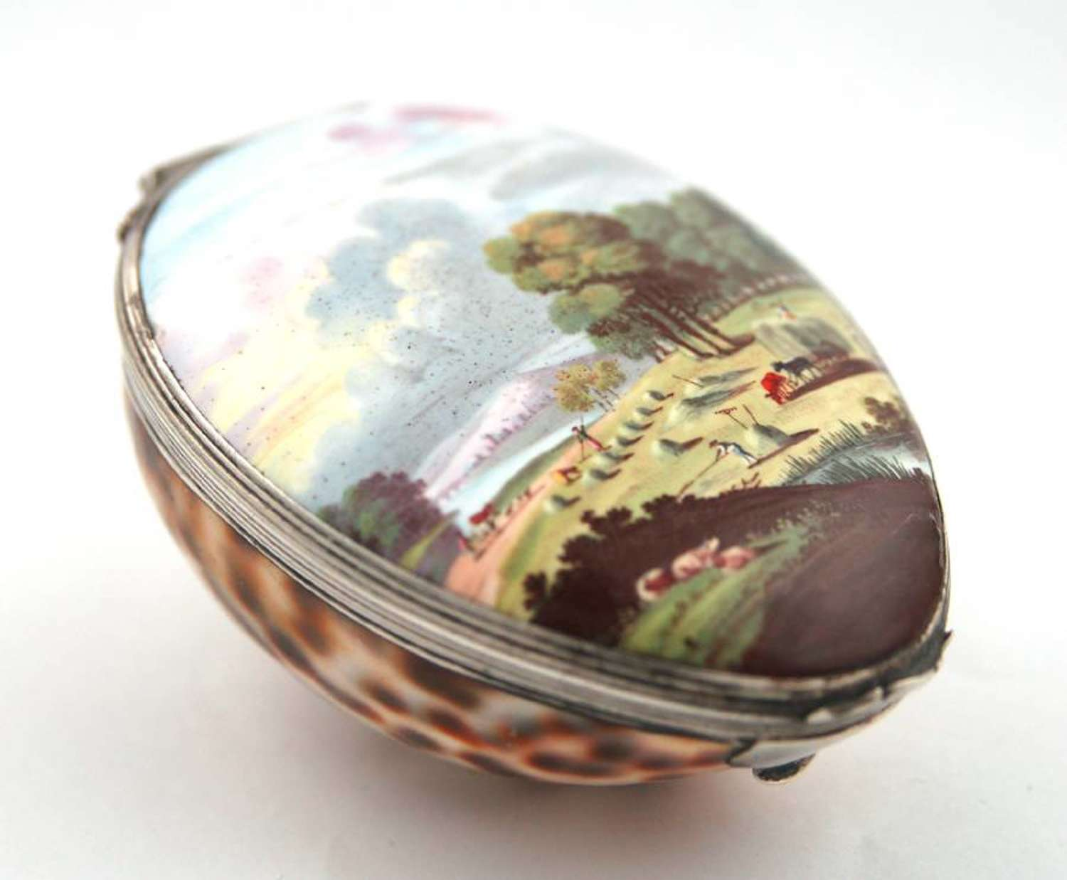 Cowrie Snuff with Enamel Lid